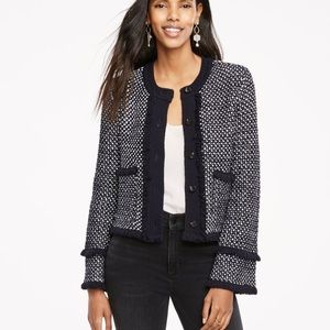 Ann Taylor Knit Fringe Sweater